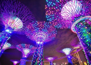 8 Top-Rated Tourist Attractions in Singapore {Updated 2020} 1