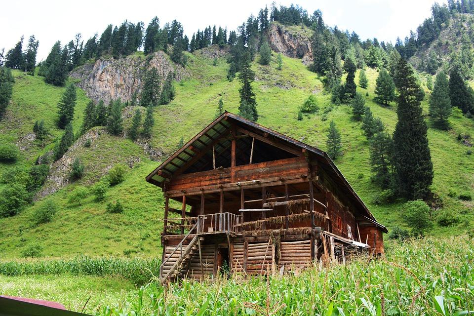 Srinagar: The Land of Beautiful Gardens 1