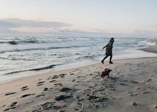 10 Best Beaches in India (2020) 1