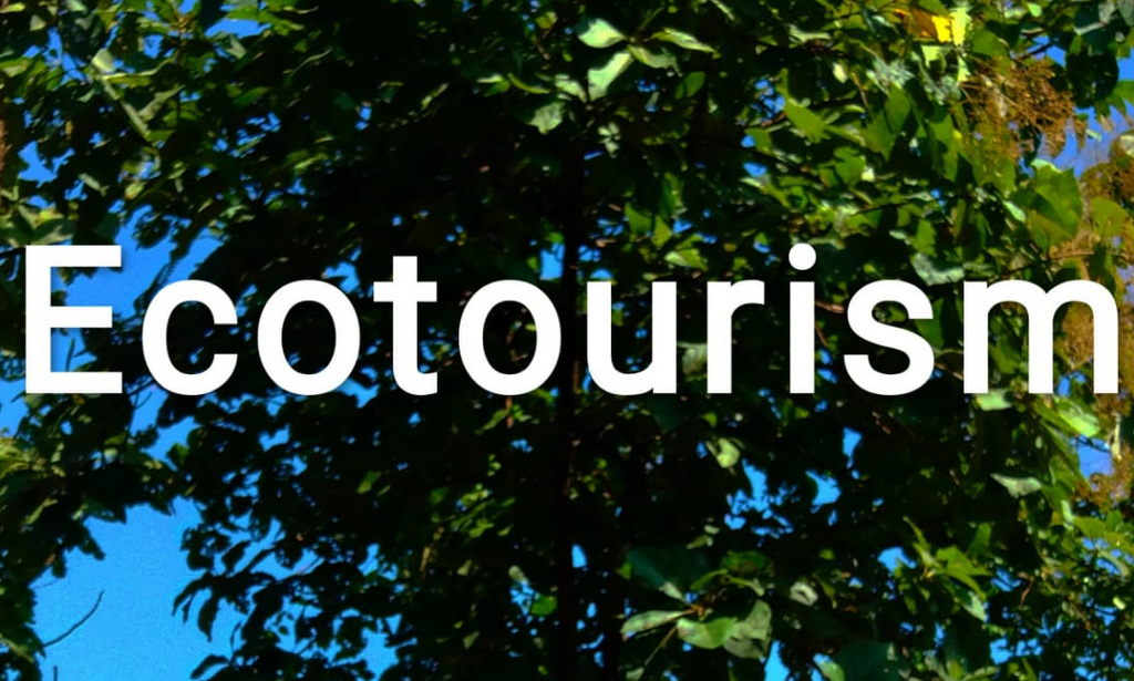 Ecotourism for Wildlife Conservation. 1