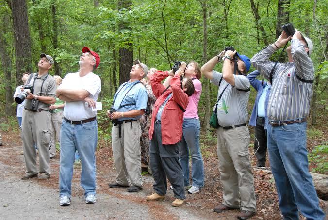 Bird Watching and Ecotourism 1