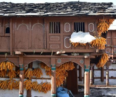 Sainji Village Uttarakhand