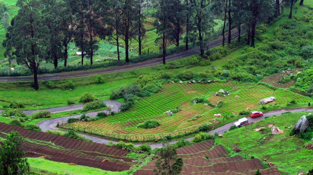Nilgiri Mountain Railway in Ooty