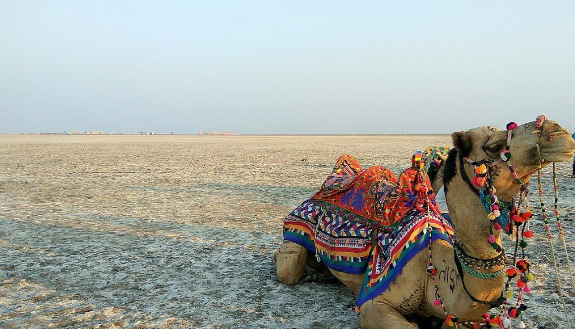 1024px-Great_Rann_of_Kutch