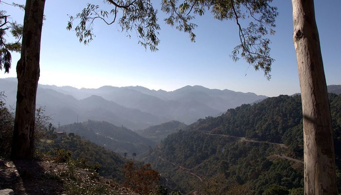 Lower_Himalays,_Kasauli,_Himachal_Pradesh,_India